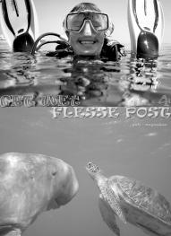 Flessepost_4_ZW_W